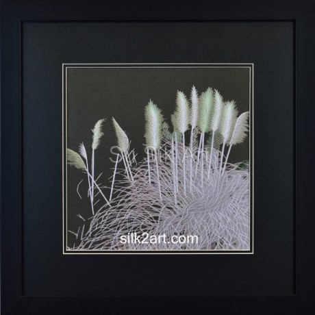 Silver Reeds-M